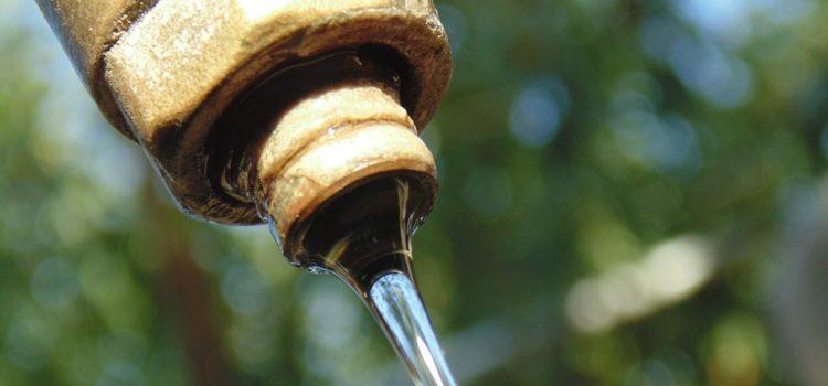 Odborníci radí, jak šetřit vodou